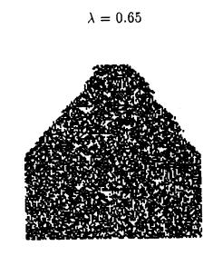 Langton 1992- Life at the edge of chaos figure 2 lambda=.65